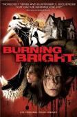 Subtitrare Burning Bright