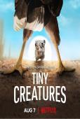 Subtitrare Tiny Creatures  - Sezonul 1