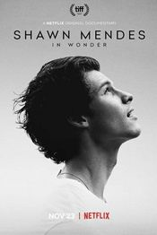 Subtitrare Shawn Mendes: In Wonder