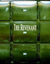 Subtitrare The Revenant