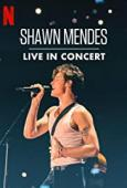 Subtitrare Shawn Mendes: Live in Concert