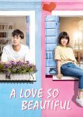 Subtitrare A Love So Beautiful - Sezonul 1