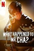 Subtitrare What Happened to Mr Cha?