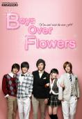Subtitrare Boys over Flowers