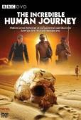 Subtitrare The Incredible Human Journey