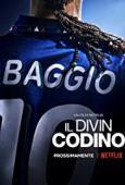 Subtitrare Baggio: The Divine Ponytail (Il Divin Codino)