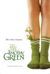 Subtitrare The Odd Life of Timothy Green