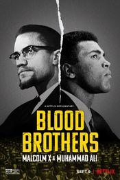 Subtitrare Blood Brothers: Malcolm X & Muhammad Ali