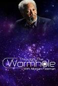 Subtitrare Through the Wormhole - Sezonul 8