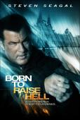 Film Born to Raise Hell