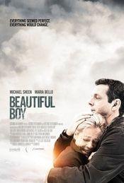 Subtitrare Beautiful Boy