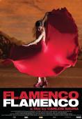 Subtitrare Flamenco, Flamenco