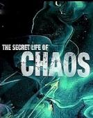 Subtitrare The Secret Life of Chaos