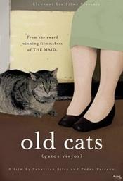 Subtitrare Gatos viejos