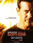 Subtitrare Burn Notice: The Fall of Sam Axe