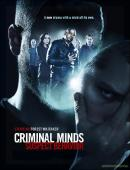Subtitrare Criminal Minds: Suspect Behavior - Sezonul 1