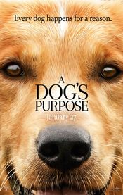 Trailer A Dog's Purpose
