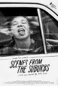 Subtitrare Scenes from the Suburbs