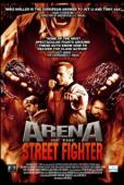 Subtitrare Arena of the Street Fighter (Urban Fighter)