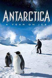 Subtitrare Antarctica: A Year on Ice