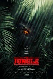 Subtitrare The Jungle
