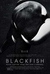 Trailer Blackfish