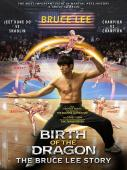 Subtitrare Birth of the Dragon