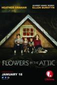 Subtitrare Flowers in the Attic