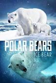 Film Polar Bears: Ice Bear