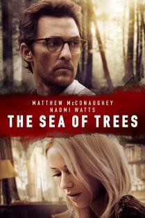 Subtitrare The Sea of Trees