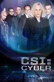 Subtitrare CSI: Cyber - Sezonul 1