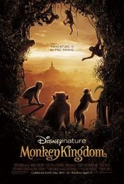 Subtitrare Monkey Kingdom