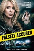 Subtitrare Falsely Accused