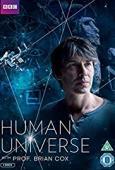 Film Human Universe