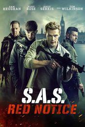 Subtitrare SAS: Red Notice