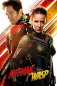 Subtitrare Ant-Man and the Wasp