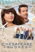 Subtitrare 