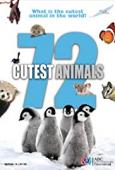 Subtitrare 72 Cutest Animals - Sezonul 1