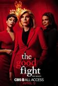Subtitrare The Good Fight - Sezonul 2