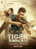 Subtitrare Tiger Zinda Hai