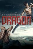 Trailer The Invincible Dragon