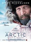 Subtitrare Arctic