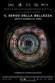 Subtitrare CERN & The Sense of Beauty