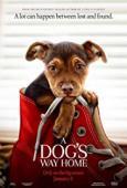 Subtitrare A Dog's Way Home