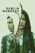 Subtitrare Dublin Murders - Sezonul 1