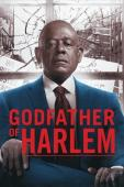 Subtitrare Godfather of Harlem - Sezonul 1