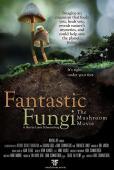 Subtitrare Fantastic Fungi