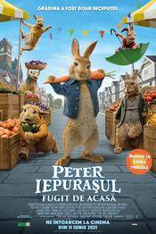 Subtitrare Peter Rabbit 2: The Runaway