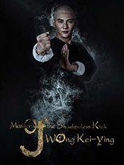 Subtitrare Master of the Shadowless Kick: Wong Kei-Ying