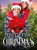 Subtitrare Poinsettias for Christmas